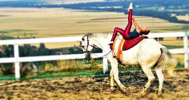 Kolonia jeździecko – woltyżerska
